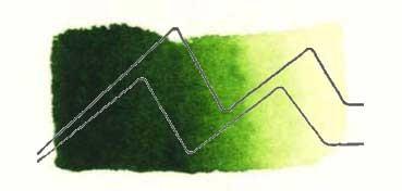 TALENS ACUARELA REMBRANDT TUBO VERDE VEJIGA - SAP GREEN - SERIE 2 - Nº 623