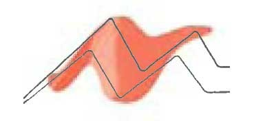 TULIP 3D PAINT CORAL / SLICK CORAL