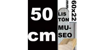 LISTÓN MUSEO (60 X 22) - 50 CM