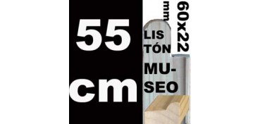 LISTÓN MUSEO (60 X 22) - 55 CM