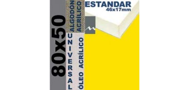 BASTIDOR ESTUDIO 46 X 17 ALGODÓN Nº2 (GRANO FINO) 80 X 50 (ÓLEO/ACRÍLICO)