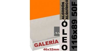 BASTIDOR GALERÍA 3D 46 X 32 ALGODÓN Nº2 (GRANO FINO) 116 X 89 50F (ÓLEO)