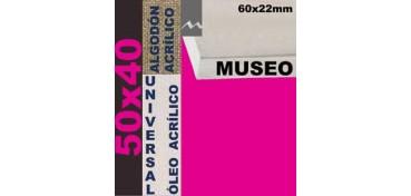 BASTIDOR MUSEO 60 X 22 ALGODÓN Nº2 (GRANO FINO) 50 X 40 (ÓLEO/ACRÍLICO)