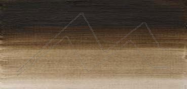 WINSOR & NEWTON ÓLEO ARTISTS SOMBRA NATURAL TONO VERDE (RAW UMBER GREEN SHADE) SERIE 1 Nº 558