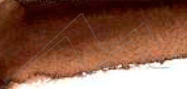 MIJELLO ACUARELA ARTIST MISSION GOLD CLASS  MARRÓN VAN DYKE OSCURO  - VAN DYKE BROWN DEEP ( PBr29 LF.5 - SEMI OPACO ) SERIE B Nº 617