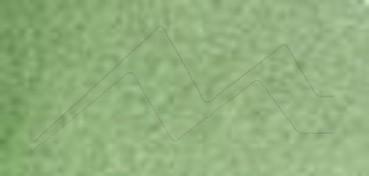 ACUARELA ROSA GALLERY GODET COMPLETO CHROMIUM OXIDE Nº 743