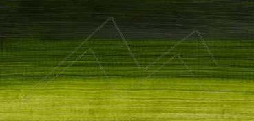 WINSOR & NEWTON ÓLEO ARTISAN VERDE VEJIGA PERMANENTE (PERM. SAP GREEN) SERIE 2 Nº 503