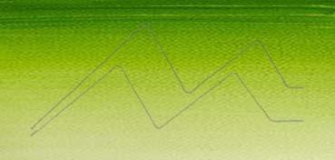 WINSOR & NEWTON ACUARELA COTMAN MEDIO GODET VERDE VEJIGA - SAP GREEN - Nº 599
