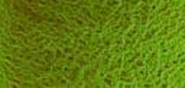 DANIEL SMITH EXTRA FINE WATERCOLOR MEDIO GODET GREEN APATITE GENUINE (APATITA VERDE VERDADERA), PIGMENTO: GENUINE GREEN APATITE, SERIE 3 Nº 197