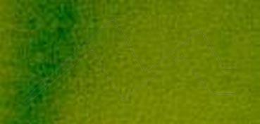 DANIEL SMITH EXTRA FINE WATERCOLOR MEDIO GODET SAP GREEN (VERDE VEJIGA), PIGMENTO: P0 48, PG 7, PY 150, SERIE 2 Nº 102
