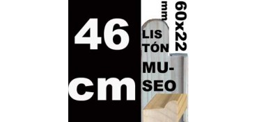 LISTÓN MUSEO (60 X 22) - 46 CM