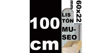 LISTÓN MUSEO (60 X 22) - 100 CM