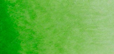 ACUARELA ST. PETERSBURG WHITE NIGHTS GODET COMPLETO - SERIE A - VERDE VEJIGA Nº 716