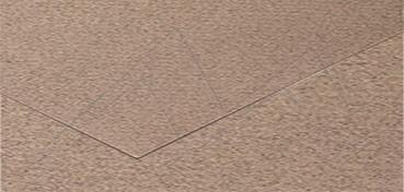 CANSON MI-TEINTES CARTULINA 160 G - GRIS CLARO (Nº 426)
