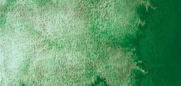 SCHMINCKE HORADAM SUPERGRANULADO FOREST GREEN Nº 942