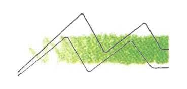 DERWENT LÁPIZ WATERCOLOUR GRASS GREEN 47