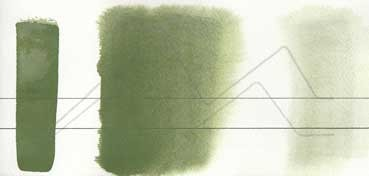 AQUARIUS ROMAN SZMAL EXTRA FINE WATERCOLOR - CHROMIUM GREEN OXIDE - SERIE 2 - Nº 229