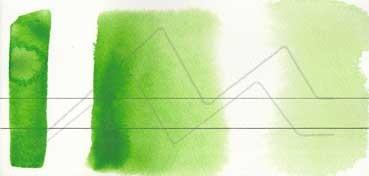 AQUARIUS ROMAN SZMAL EXTRA FINE WATERCOLOR - PERMANENT GREEN LIGHT - SERIE 2 - Nº 231