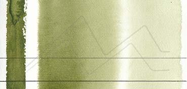 AQUARIUS ROMAN SZMAL EXTRA FINE WATERCOLOR - SAP GREEN LIGHT - SERIE 2 - Nº 252