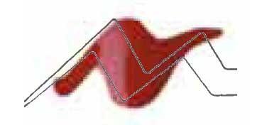 TULIP 3D PAINT ROJO OSCURO / SLICK DEEP RED
