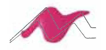 TULIP 3D PAINT ROSA / SLICK PINK
