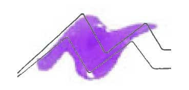 TULIP 3D PAINT LILA / SLICK LILAC