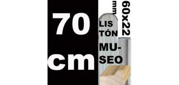 LISTÓN MUSEO (60 X 22) - 70 CM