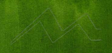 LIQUITEX TINTA ACRÍLICA VERDE VEJIGA PERMANENTE (TRASLÚCIDO) (SAP GREEN PERMANENT) Nº 315