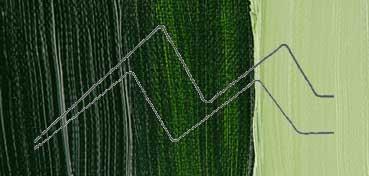 WINSOR & NEWTON ÓLEO GRIFFIN VERDE VEJIGA PERMANENTE (PERM. SAP GREEN) SERIE 2 Nº 503