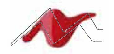 TULIP 3D PAINT ROJO CÁLIDO / SLICK TRUE RED