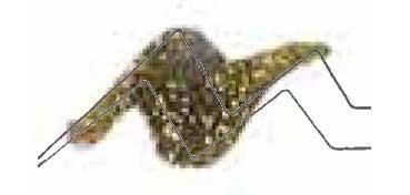 TULIP 3D PAINT DORADO / GLITTER GOLD