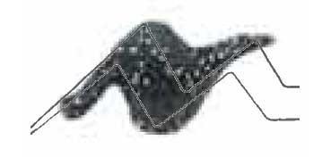 TULIP 3D PAINT NEGRO / SPARKLE BLACK