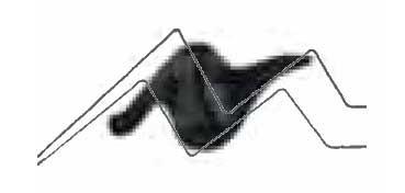 TULIP 3D PAINT NEGRO BÁSICO / MATTE BASIC BLACK