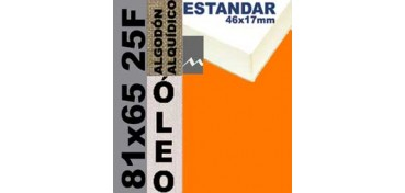 BASTIDOR ESTUDIO 46 X 17 ALGODÓN Nº2 (GRANO FINO) 81 X 65 25F (ÓLEO)