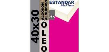 BASTIDOR ESTUDIO 46 X 17 ALGODÓN Nº2 (GRANO FINO) 40 X 30 (ÓLEO)