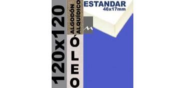 BASTIDOR ESTUDIO 46 X 17 ALGODÓN Nº2 (GRANO FINO) 120 X 120 (ÓLEO)
