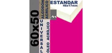BASTIDOR ESTUDIO 46 X 17 ALGODÓN Nº2 (GRANO FINO) 60 X 50 (ÓLEO/ACRÍLICO)
