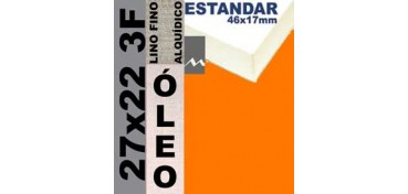 BASTIDOR ESTUDIO 46 X 17 LINO Nº1 (GRANO FINO) 27 X 22 3F (ÓLEO)
