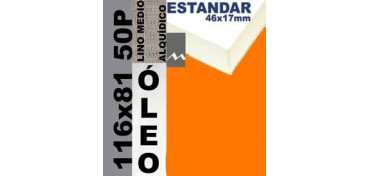 BASTIDOR ESTUDIO 46 X 17 LINO Nº3 (GRANO MEDIO) 116 X 81 50P (ÓLEO)
