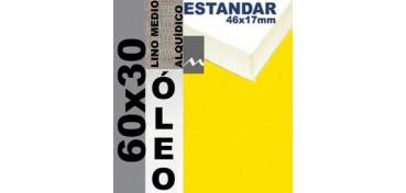 BASTIDOR ESTUDIO 46 X 17 LINO Nº3 (GRANO MEDIO) 60 X 30 (ÓLEO)