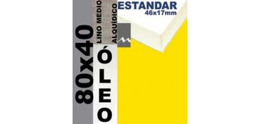 BASTIDOR ESTUDIO 46 X 17 LINO Nº3 (GRANO MEDIO) 80 X 40 (ÓLEO)