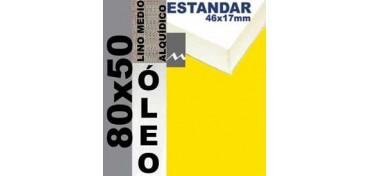 BASTIDOR ESTUDIO 46 X 17 LINO Nº3 (GRANO MEDIO) 80 X 50 (ÓLEO)
