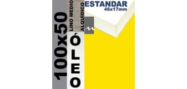 BASTIDOR ESTUDIO 46 X 17 LINO Nº3 (GRANO MEDIO) 100 X 50 (ÓLEO)
