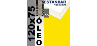BASTIDOR ESTUDIO 46 X 17 LINO Nº3 (GRANO MEDIO) 120 X 75 (ÓLEO)