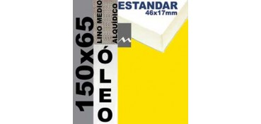 BASTIDOR ESTUDIO 46 X 17 LINO Nº3 (GRANO MEDIO) 150 X 65 (ÓLEO)