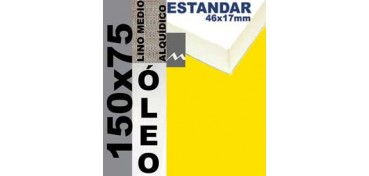 BASTIDOR ESTUDIO 46 X 17 LINO Nº3 (GRANO MEDIO) 150 X 75 (ÓLEO)