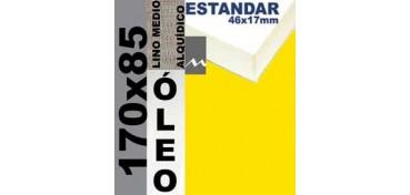 BASTIDOR ESTUDIO 46 X 17 LINO Nº3 (GRANO MEDIO) 170 X 85 (ÓLEO)