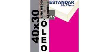 BASTIDOR ESTUDIO 46 X 17 LINO Nº3 (GRANO MEDIO) 40 X 30 (ÓLEO)