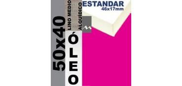 BASTIDOR ESTUDIO 46 X 17 LINO Nº3 (GRANO MEDIO) 50 X 40 (ÓLEO)