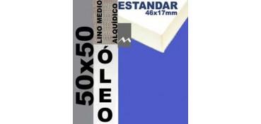 BASTIDOR ESTUDIO 46 X 17 LINO Nº3 (GRANO MEDIO) 50 X 50 (ÓLEO)